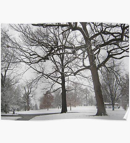 Feb. 19 2012 Snowstorm 19 Poster