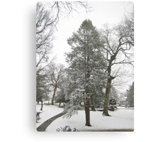 Feb. 19 2012 Snowstorm 20 Canvas Print