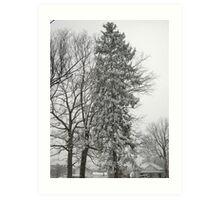 Feb. 19 2012 Snowstorm 21 Art Print