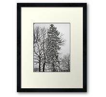 Feb. 19 2012 Snowstorm 21 Framed Print