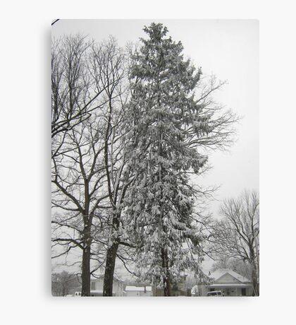 Feb. 19 2012 Snowstorm 21 Canvas Print
