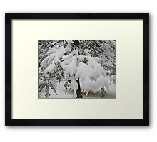 Feb. 19 2012 Snowstorm 23 Framed Print