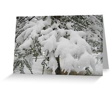 Feb. 19 2012 Snowstorm 23 Greeting Card