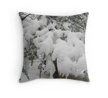 Feb. 19 2012 Snowstorm 23 Throw Pillow