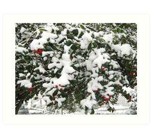 Feb. 19 2012 Snowstorm 24 Art Print