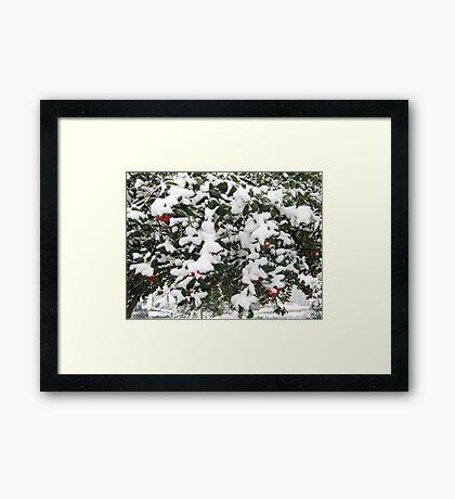 Feb. 19 2012 Snowstorm 24 Framed Print