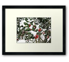 Feb. 19 2012 Snowstorm 25 Framed Print