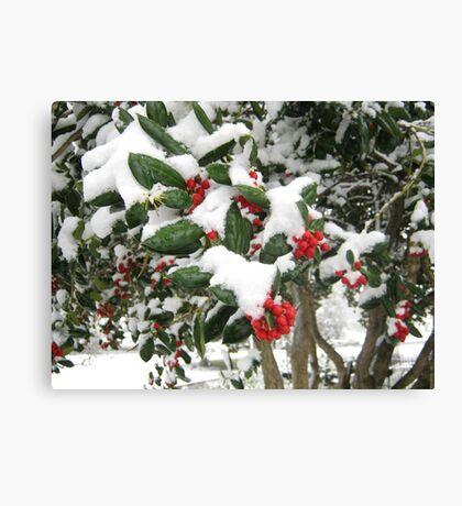 Feb. 19 2012 Snowstorm 25 Canvas Print