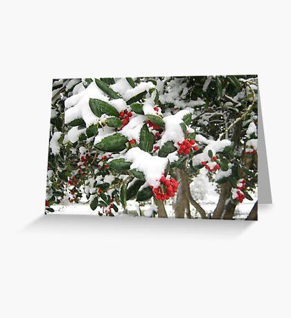 Feb. 19 2012 Snowstorm 25 Greeting Card
