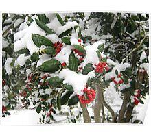 Feb. 19 2012 Snowstorm 25 Poster