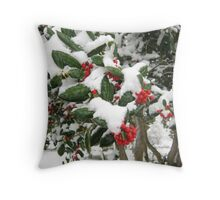 Feb. 19 2012 Snowstorm 25 Throw Pillow