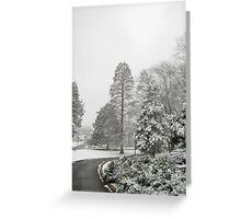 Feb. 19 2012 Snowstorm 26 Greeting Card