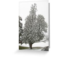 Feb. 19 2012 Snowstorm 27 Greeting Card