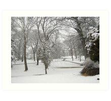 Feb. 19 2012 Snowstorm 28 Art Print