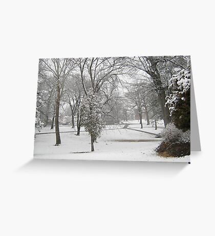 Feb. 19 2012 Snowstorm 28 Greeting Card