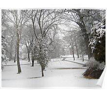 Feb. 19 2012 Snowstorm 28 Poster