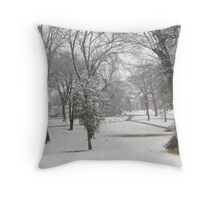 Feb. 19 2012 Snowstorm 28 Throw Pillow