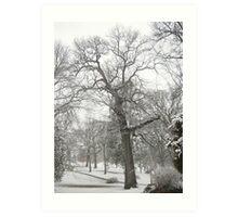 Feb. 19 2012 Snowstorm 29 Art Print