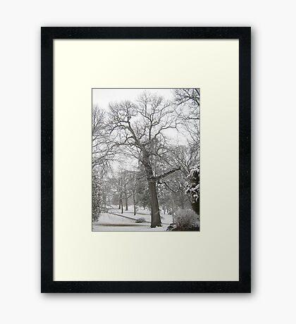Feb. 19 2012 Snowstorm 29 Framed Print