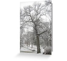 Feb. 19 2012 Snowstorm 29 Greeting Card