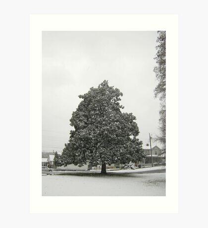 Feb. 19 2012 Snowstorm 30 Art Print