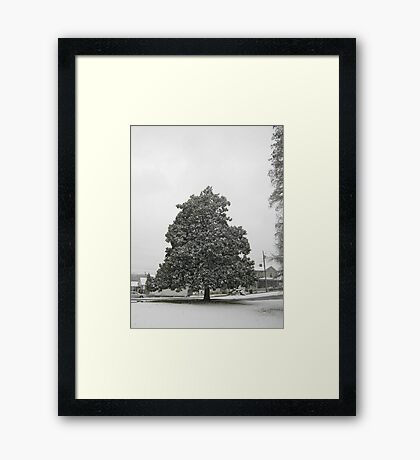 Feb. 19 2012 Snowstorm 30 Framed Print