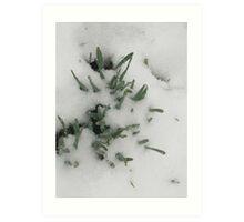 Feb. 19 2012 Snowstorm 31 Art Print
