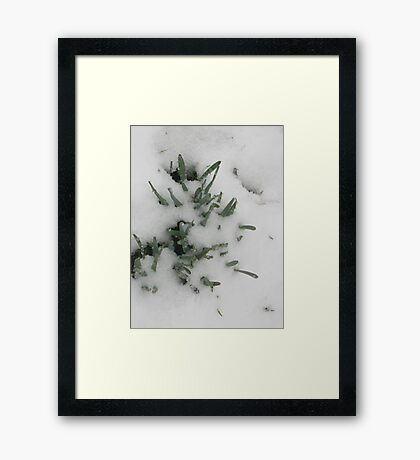 Feb. 19 2012 Snowstorm 31 Framed Print