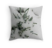 Feb. 19 2012 Snowstorm 31 Throw Pillow