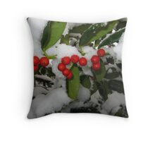 Feb. 19 2012 Snowstorm 33 Throw Pillow