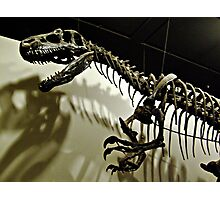 Raptor Skeleton and Scary Shadows Photographic Print