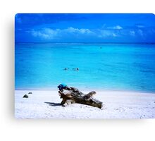Cooling down Canvas Print
