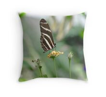 Zebra Longwing - Heliconius Charitonius Throw Pillow