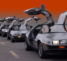 A Gaggle of Gullwings by WildBillPho