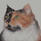 In Remembrance of my Beloved Cali...12-24-12. Rest in Peace, My Dear Little Girl by Pam Humbargar