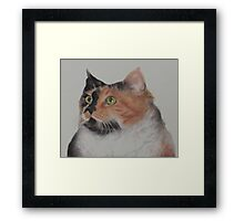 In Remembrance of my Beloved Cali...12-24-12. Rest in Peace, My Dear Little Girl Framed Print