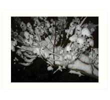 Feb. 19 2012 Snowstorm 35 Art Print