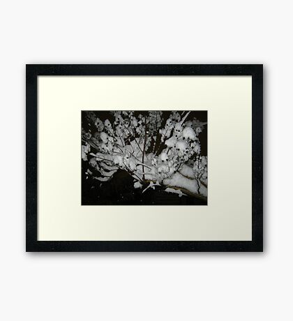 Feb. 19 2012 Snowstorm 35 Framed Print
