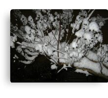 Feb. 19 2012 Snowstorm 35 Canvas Print