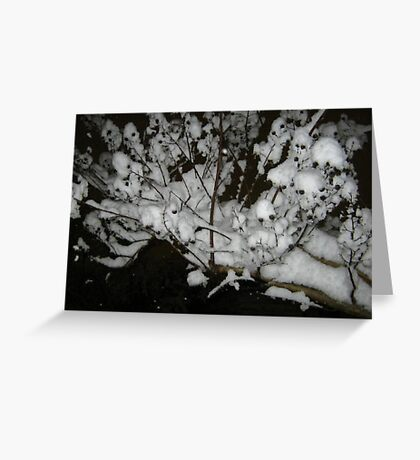 Feb. 19 2012 Snowstorm 35 Greeting Card