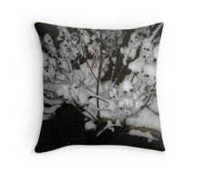 Feb. 19 2012 Snowstorm 35 Throw Pillow