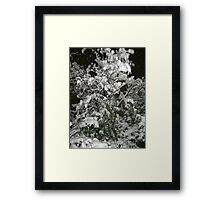 Feb. 19 2012 Snowstorm 36 Framed Print
