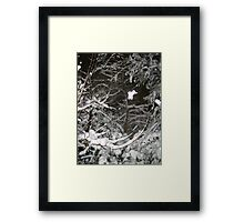 Feb. 19 2012 Snowstorm 37 Framed Print