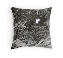 Feb. 19 2012 Snowstorm 37 Throw Pillow