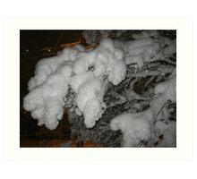 Feb. 19 2012 Snowstorm 38 Art Print