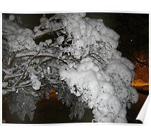 Feb. 19 2012 Snowstorm 39 Poster