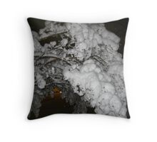Feb. 19 2012 Snowstorm 39 Throw Pillow