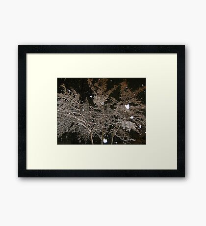 Feb. 19 2012 Snowstorm 40 Framed Print