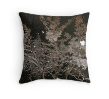 Feb. 19 2012 Snowstorm 40 Throw Pillow