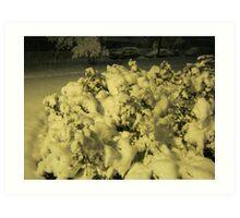 Feb. 19 2012 Snowstorm 42 Art Print